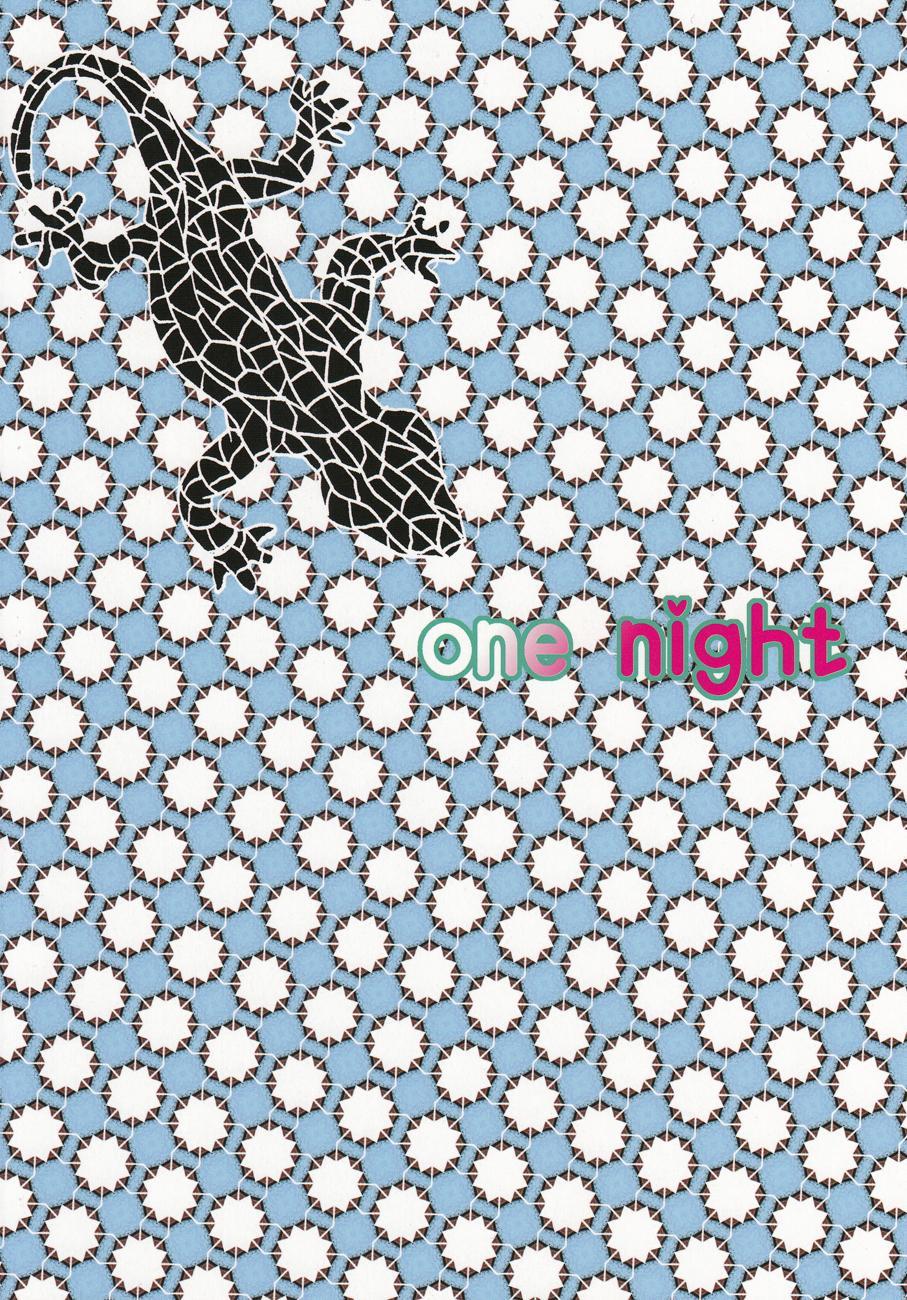 one night 29