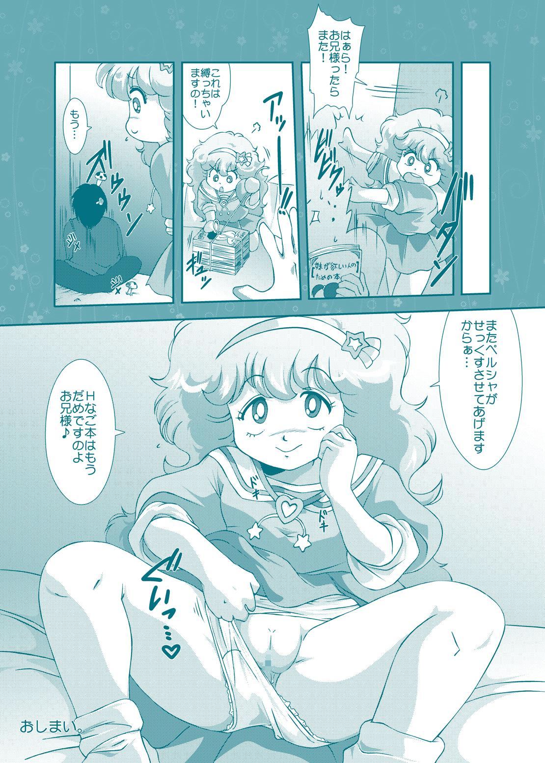 Fairy★Cat 13