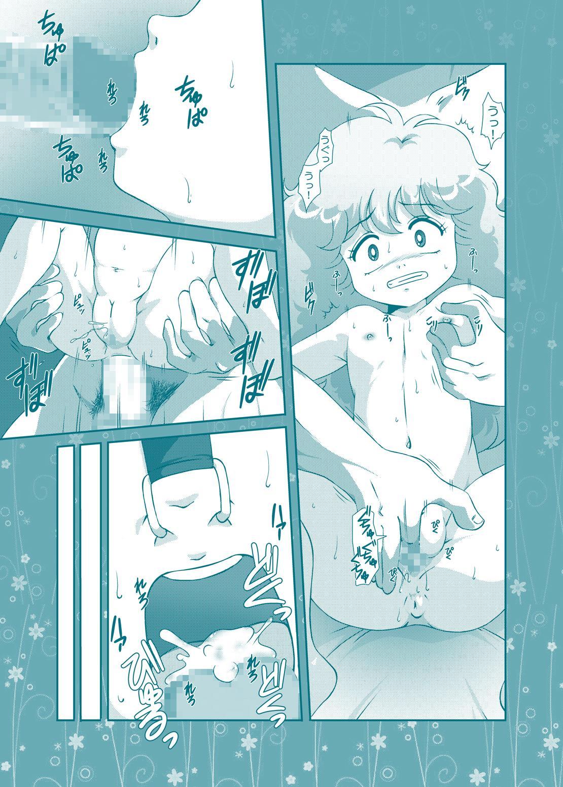 Fairy★Cat 30