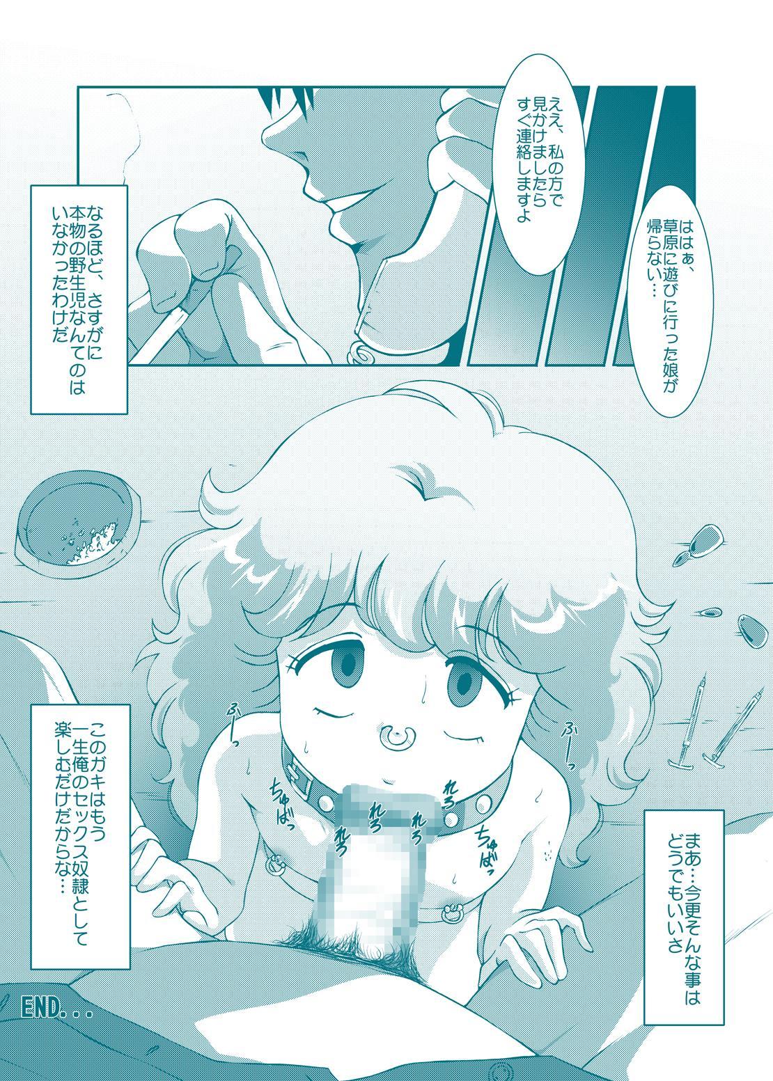 Fairy★Cat 31