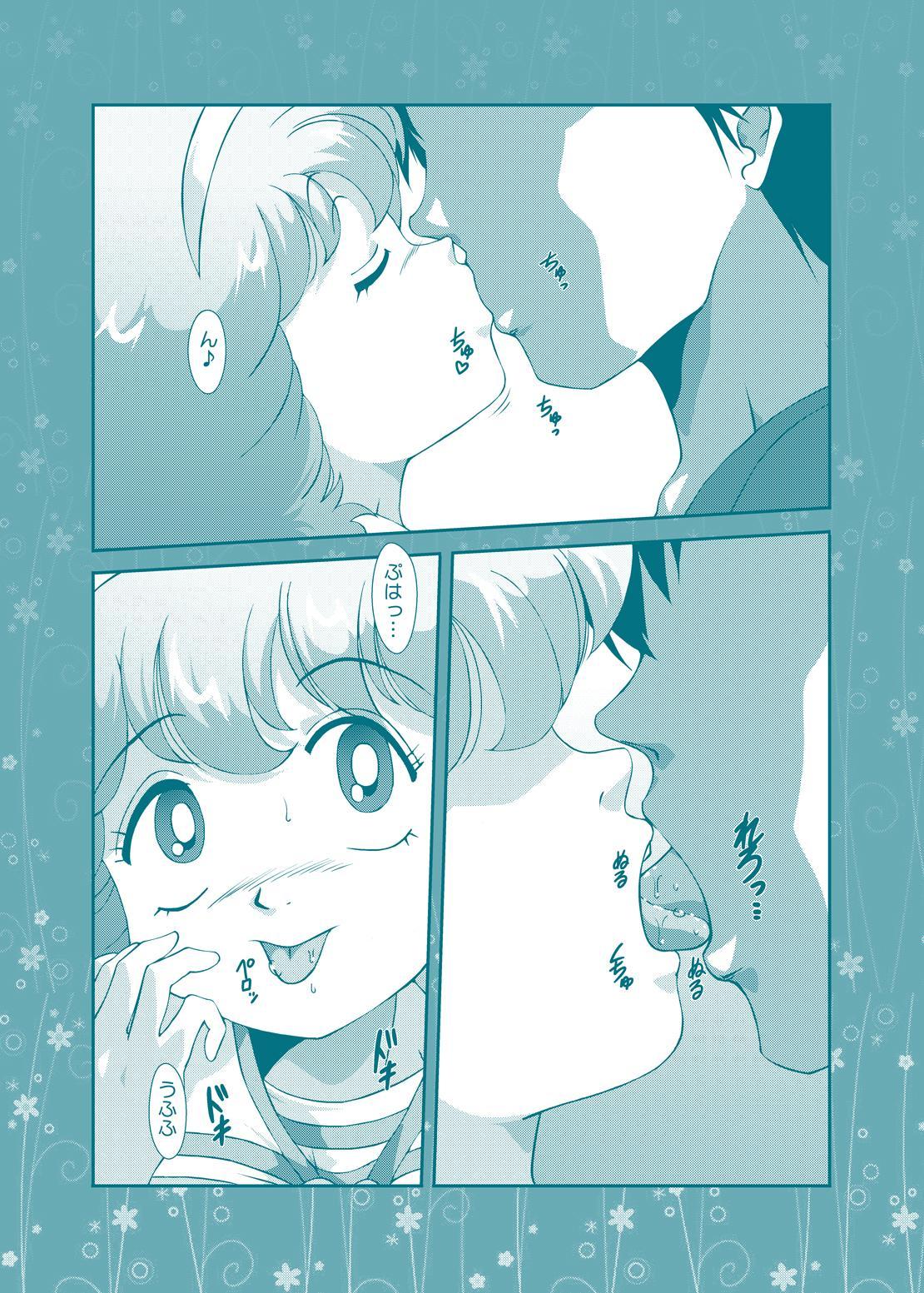 Fairy★Cat 4