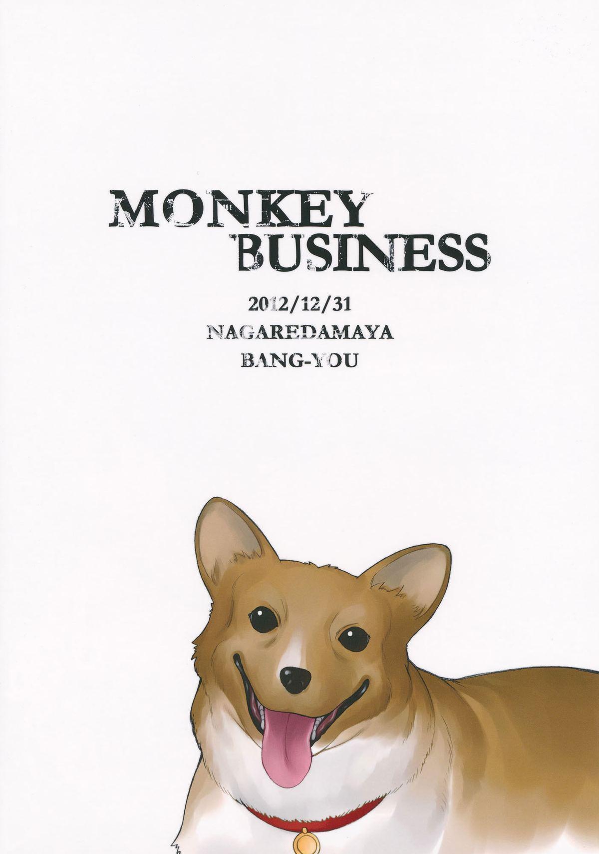 Monkey Business 17