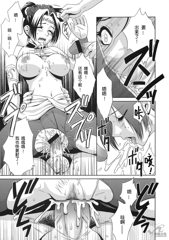 In Sangoku Musou Tensemi Gaiden 19