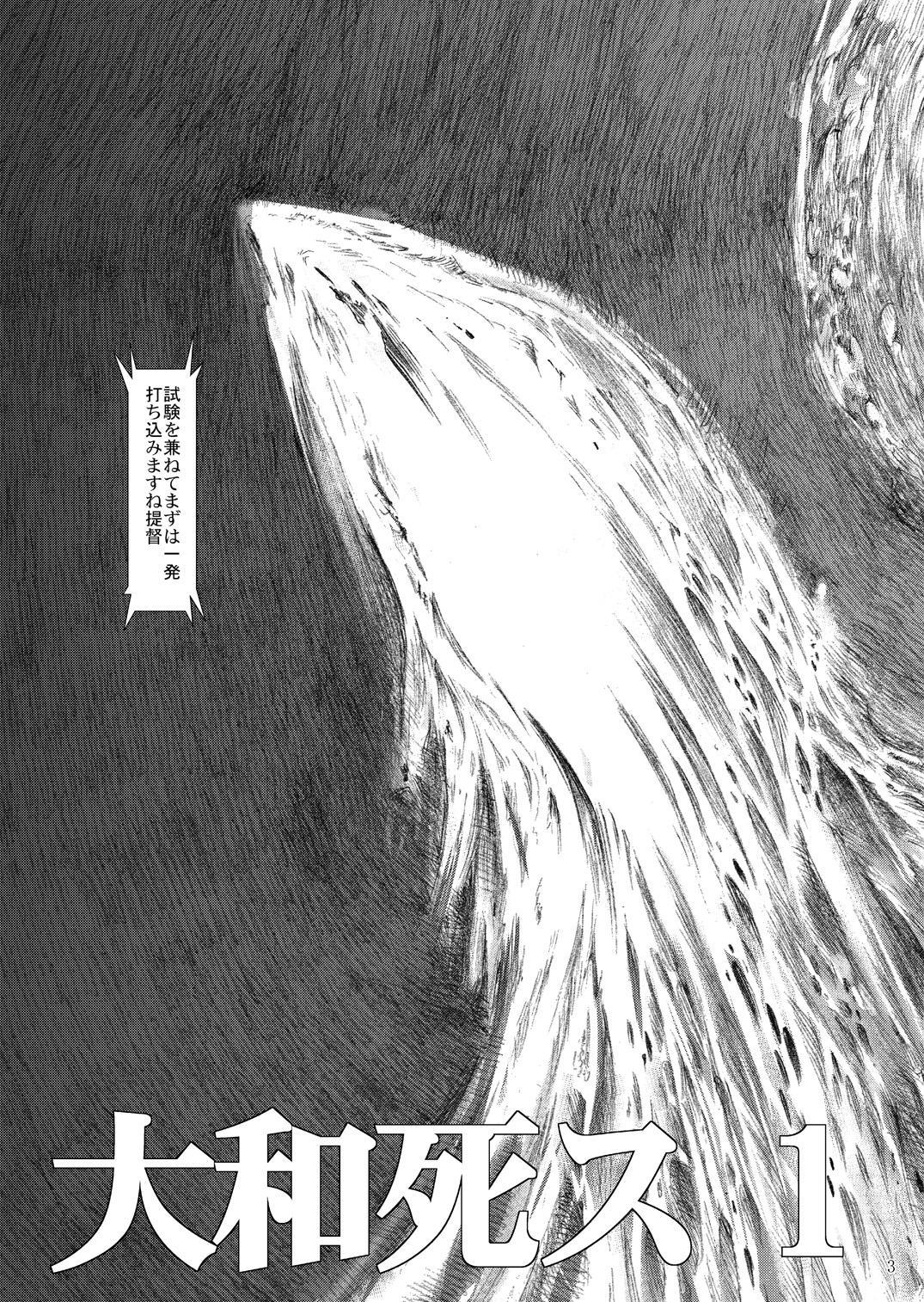 Yamato Shisu 1 3