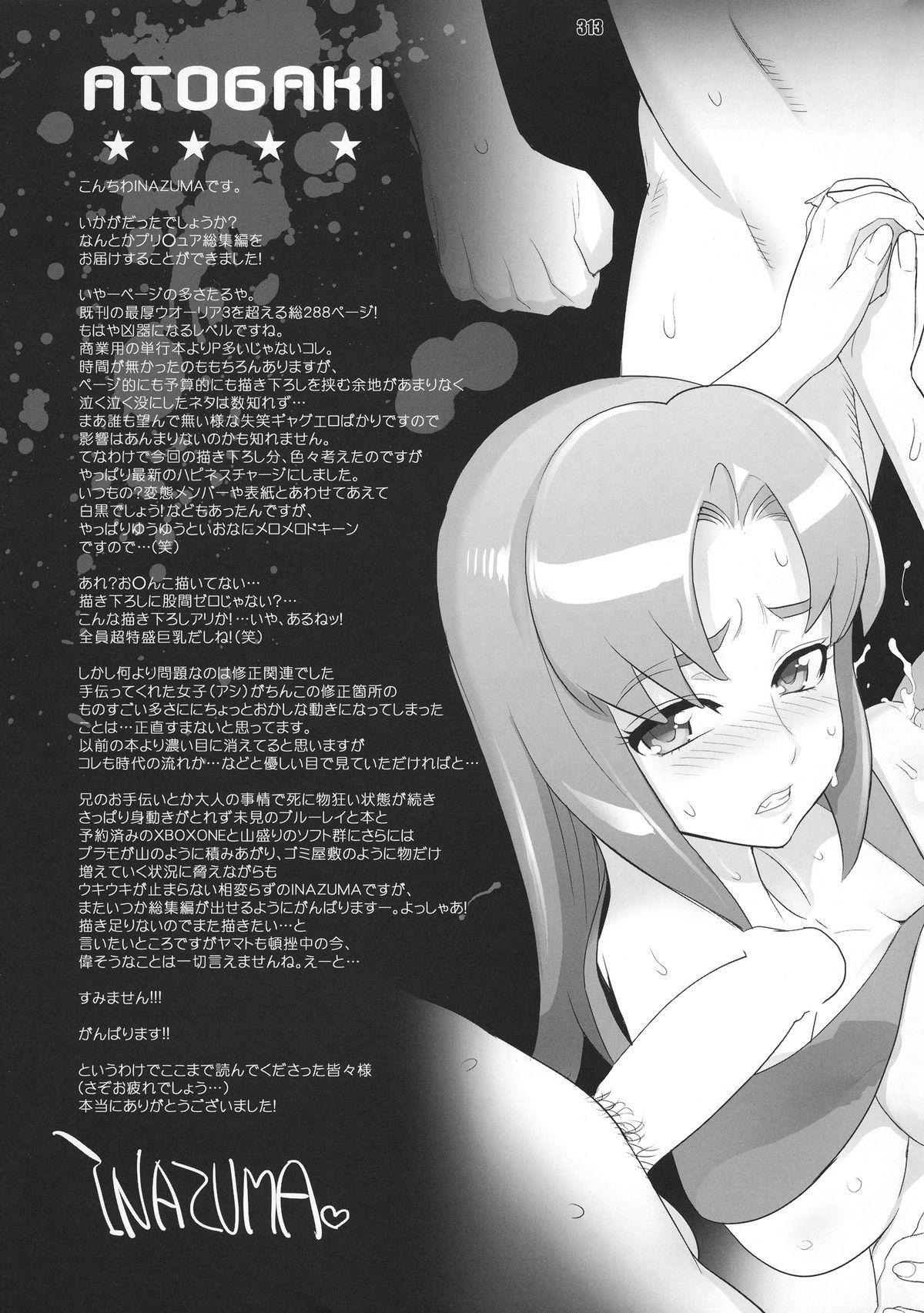 Inazuma Pretty Warrior 311