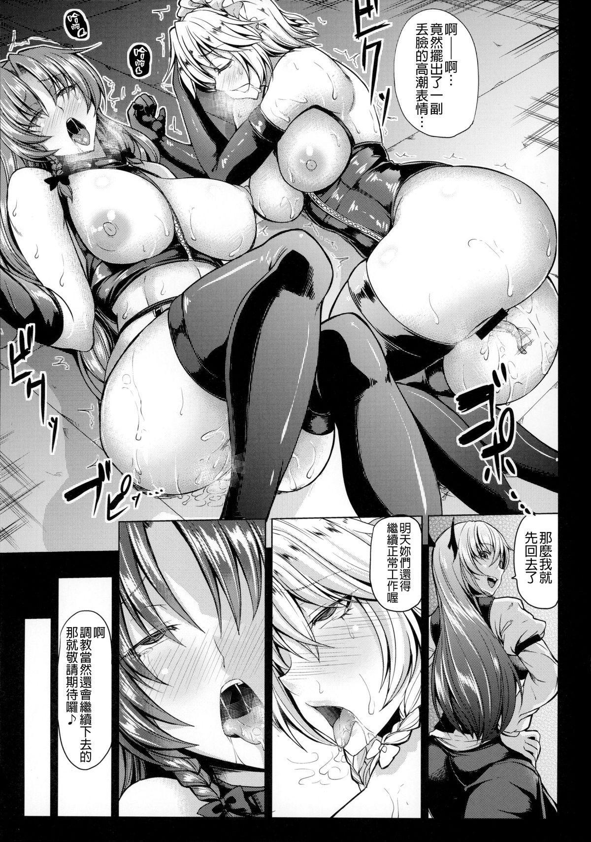 MeiSaku Choukyou Nikki 11