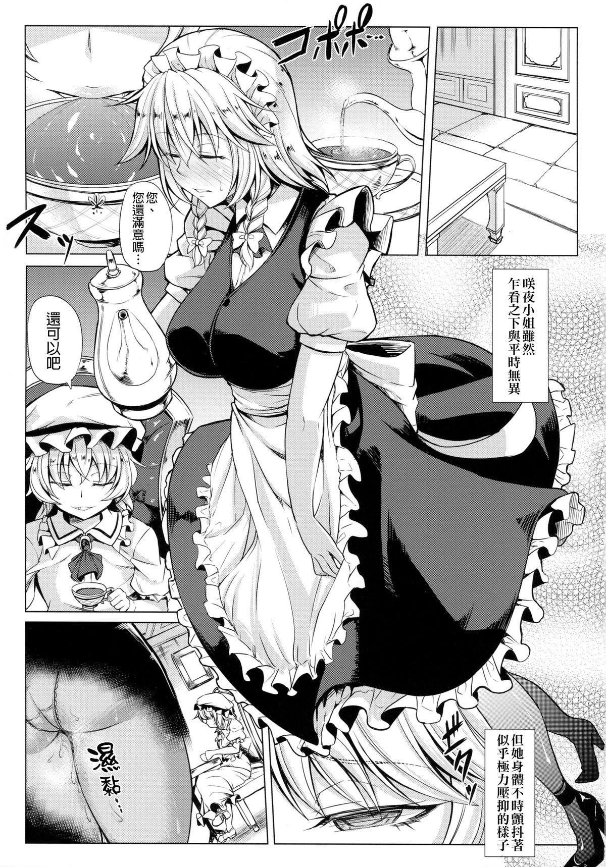 MeiSaku Choukyou Nikki 13