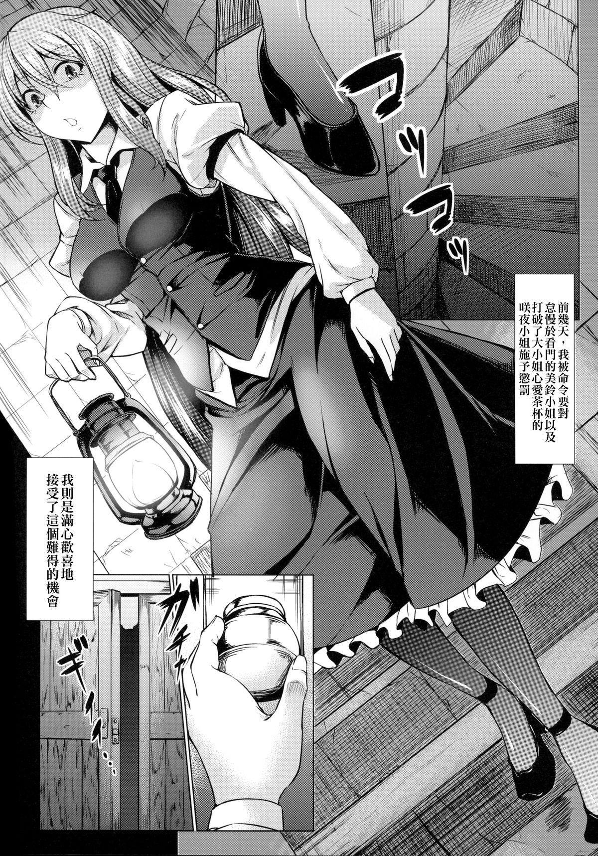 MeiSaku Choukyou Nikki 2