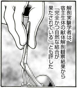 """CORRUPT&ROTTEN Cutey Liddy no Funiku no Andouille """"Sono San"""" 23"""