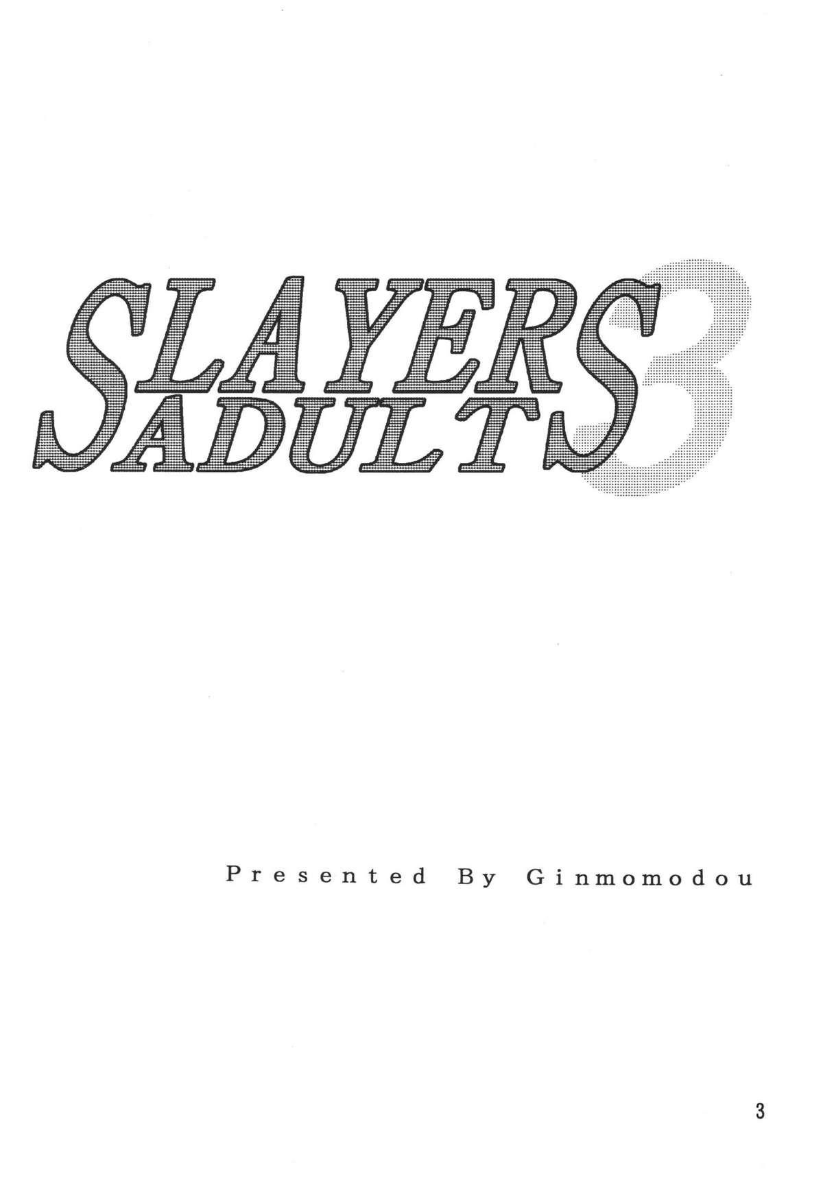 SLAYERS ADULT 3 2