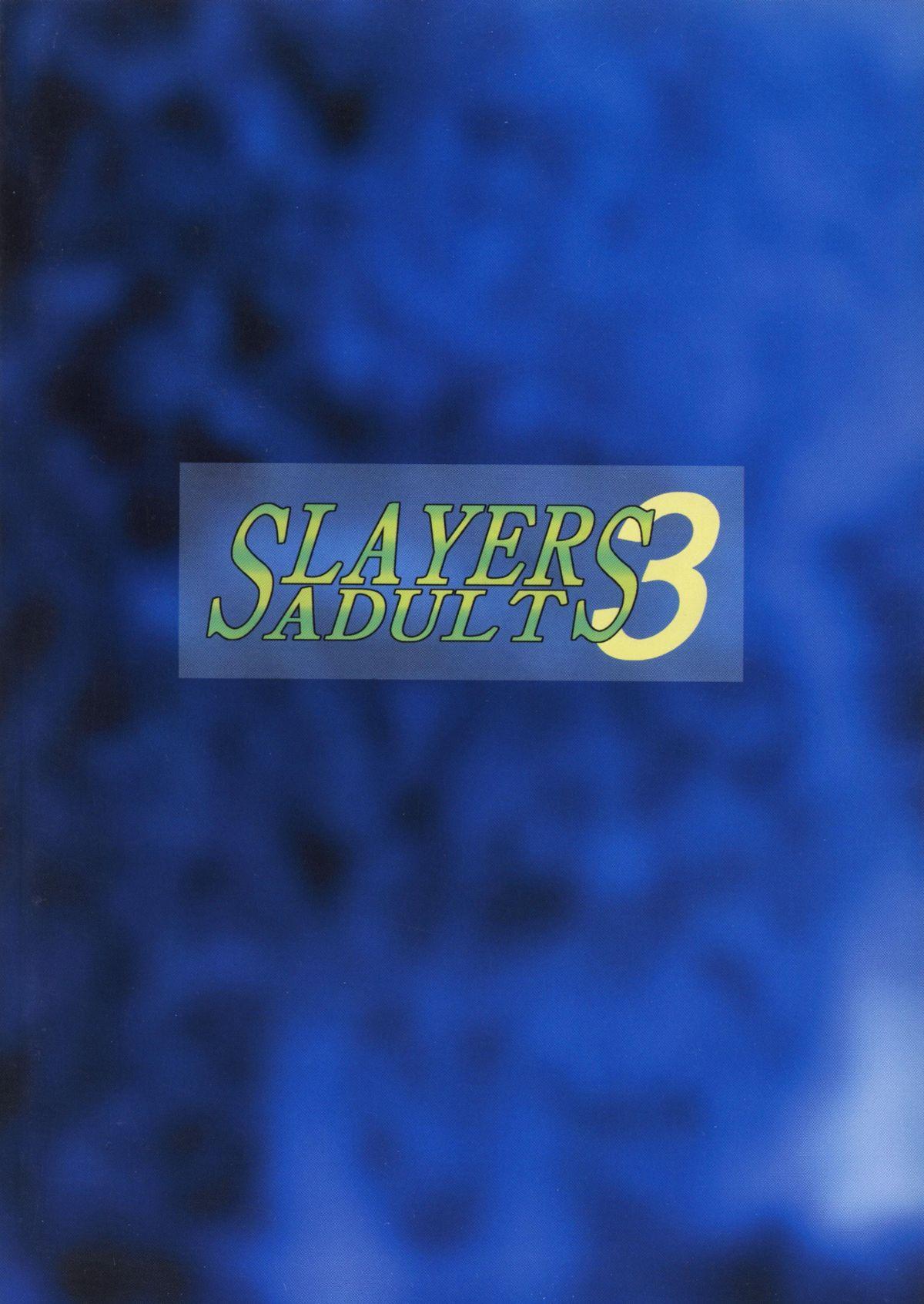 SLAYERS ADULT 3 51