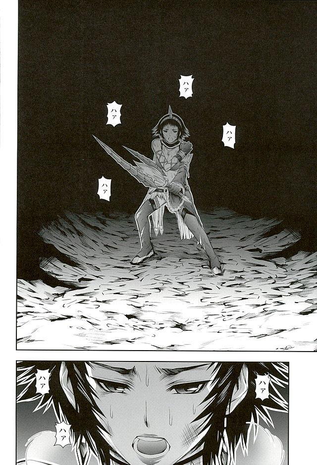 Pair Hunter no Seitai vol.2-1 29