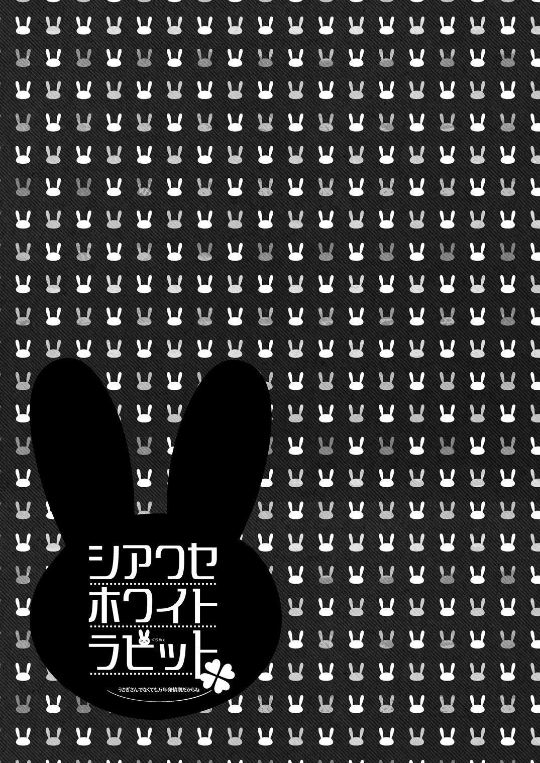 Shiawase White Rabbit 29