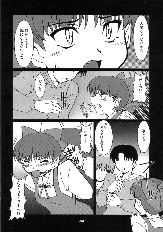 Neko-chan Maru 2