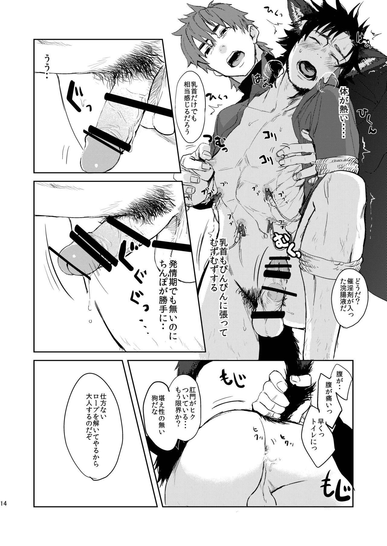 Fate/Wolf 13