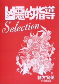 Kyouakuteki Shidou Selection 3