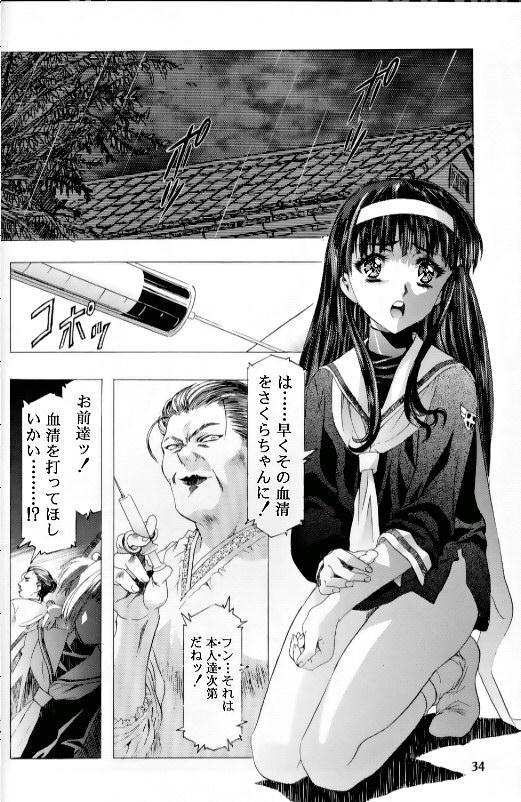 Sakura Ame Ⅲ 29