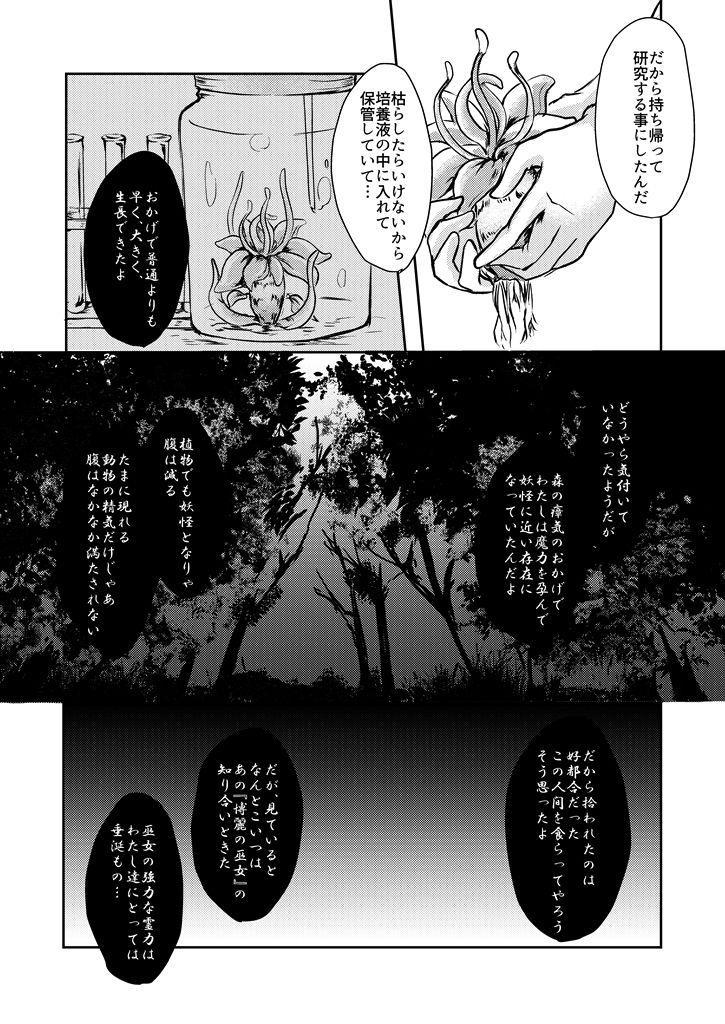 Kanji Garame Honey 12