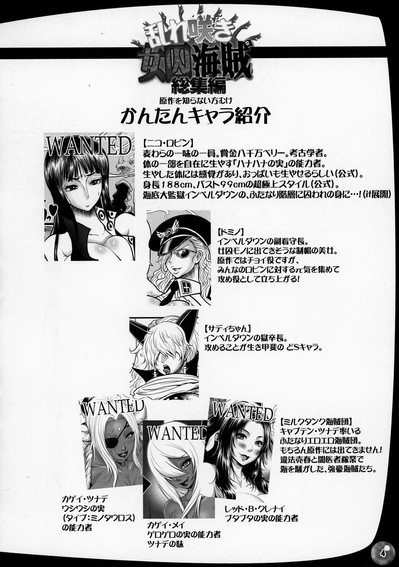 Midare Saki Joshuu Kaizoku Soushuuhen 3