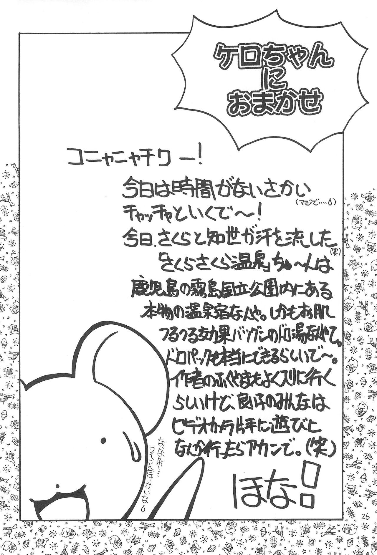 Sakura Mail 27