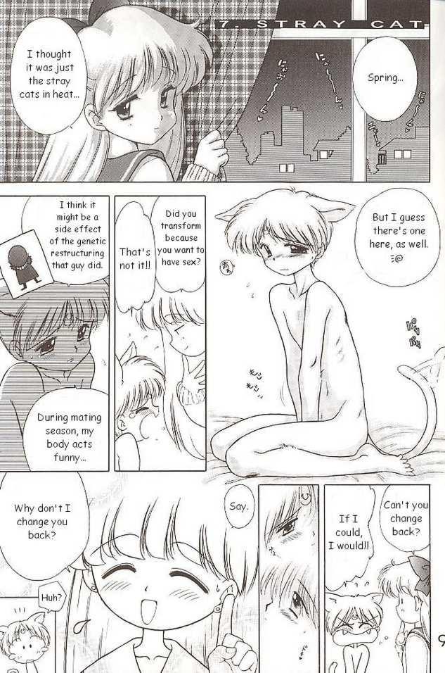 Sailor Venus - The Stray Cat 0