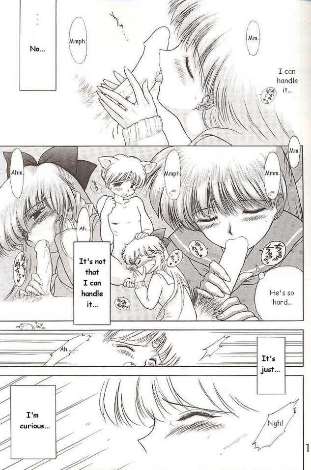 Sailor Venus - The Stray Cat 2