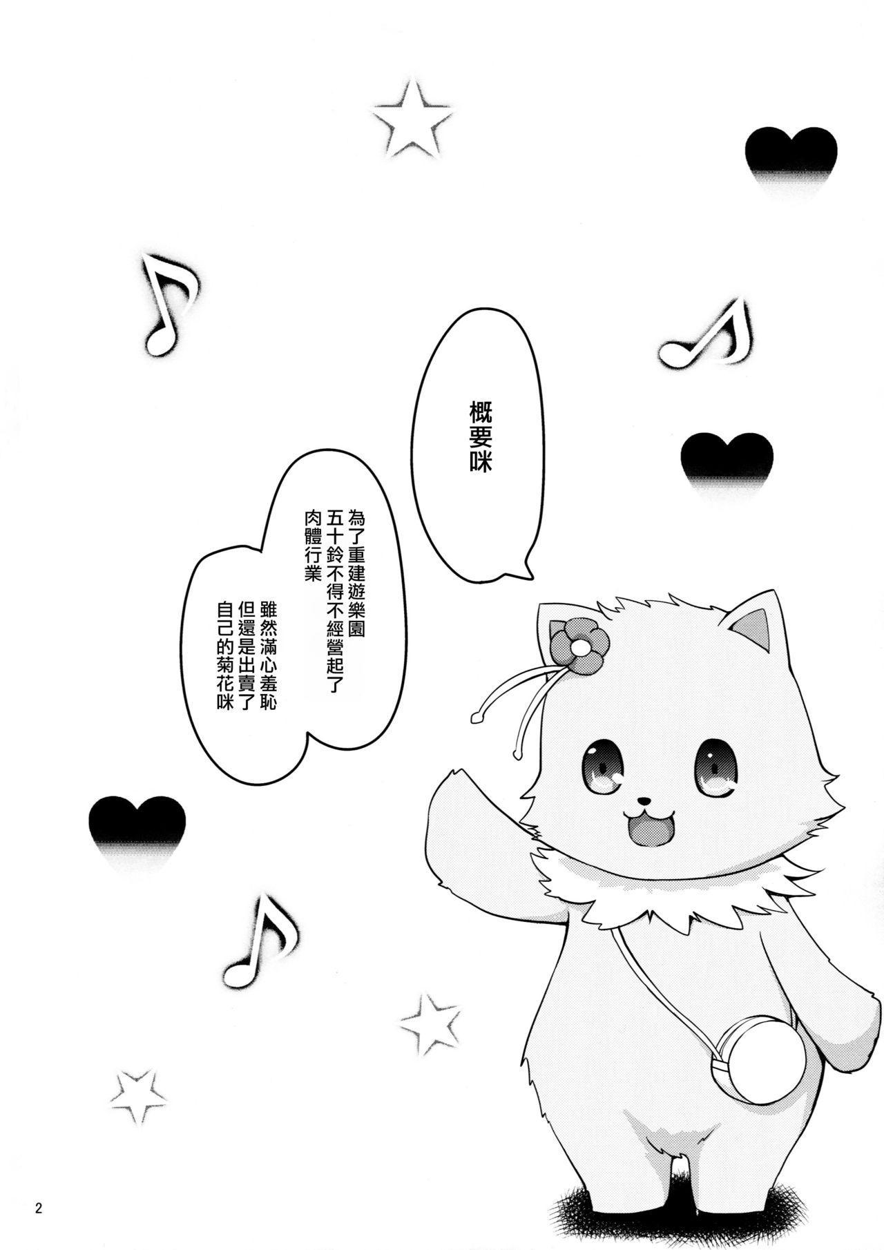 Shumi no hon 3