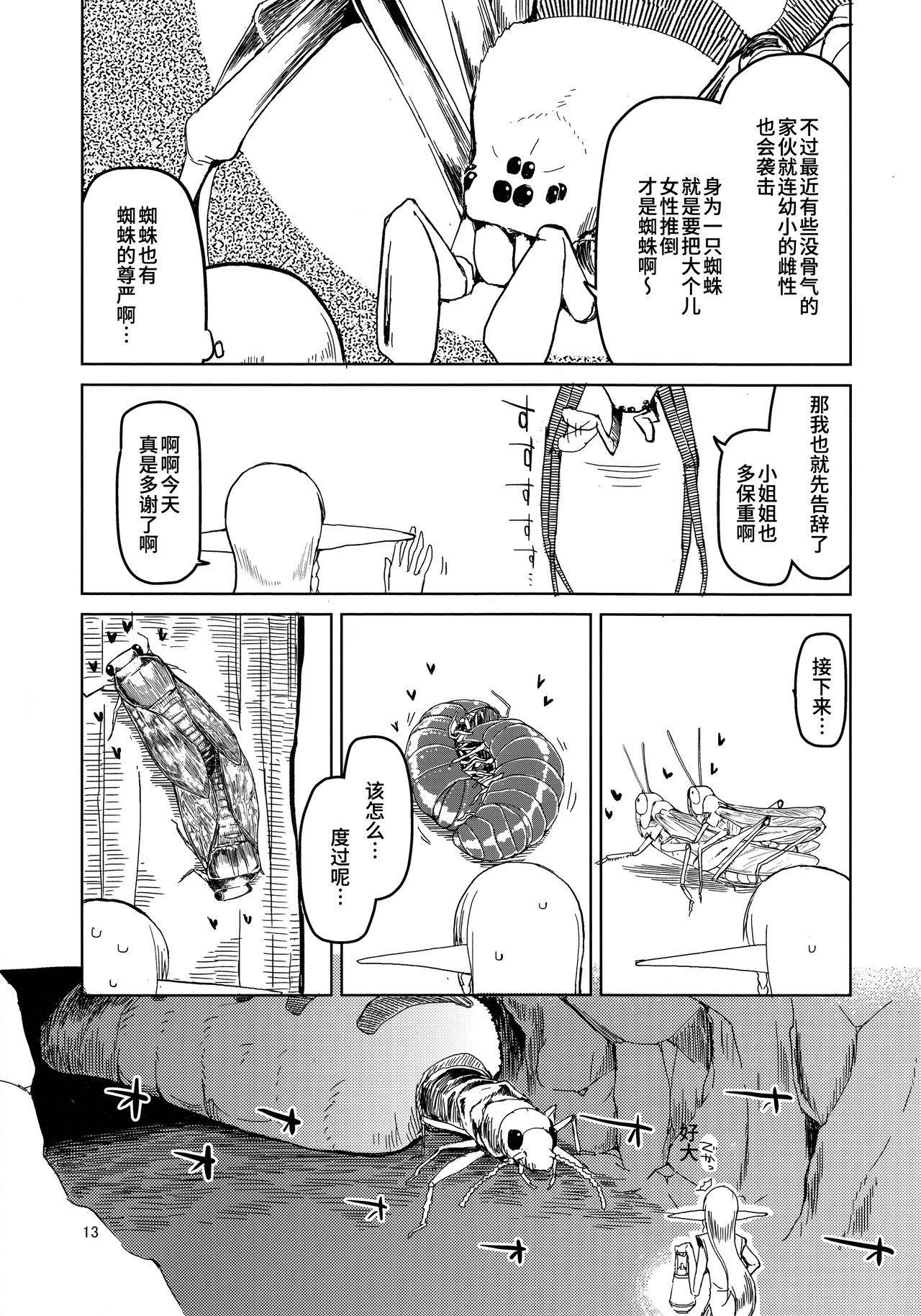Dosukebe Elf no Ishukan Nikki 5 13