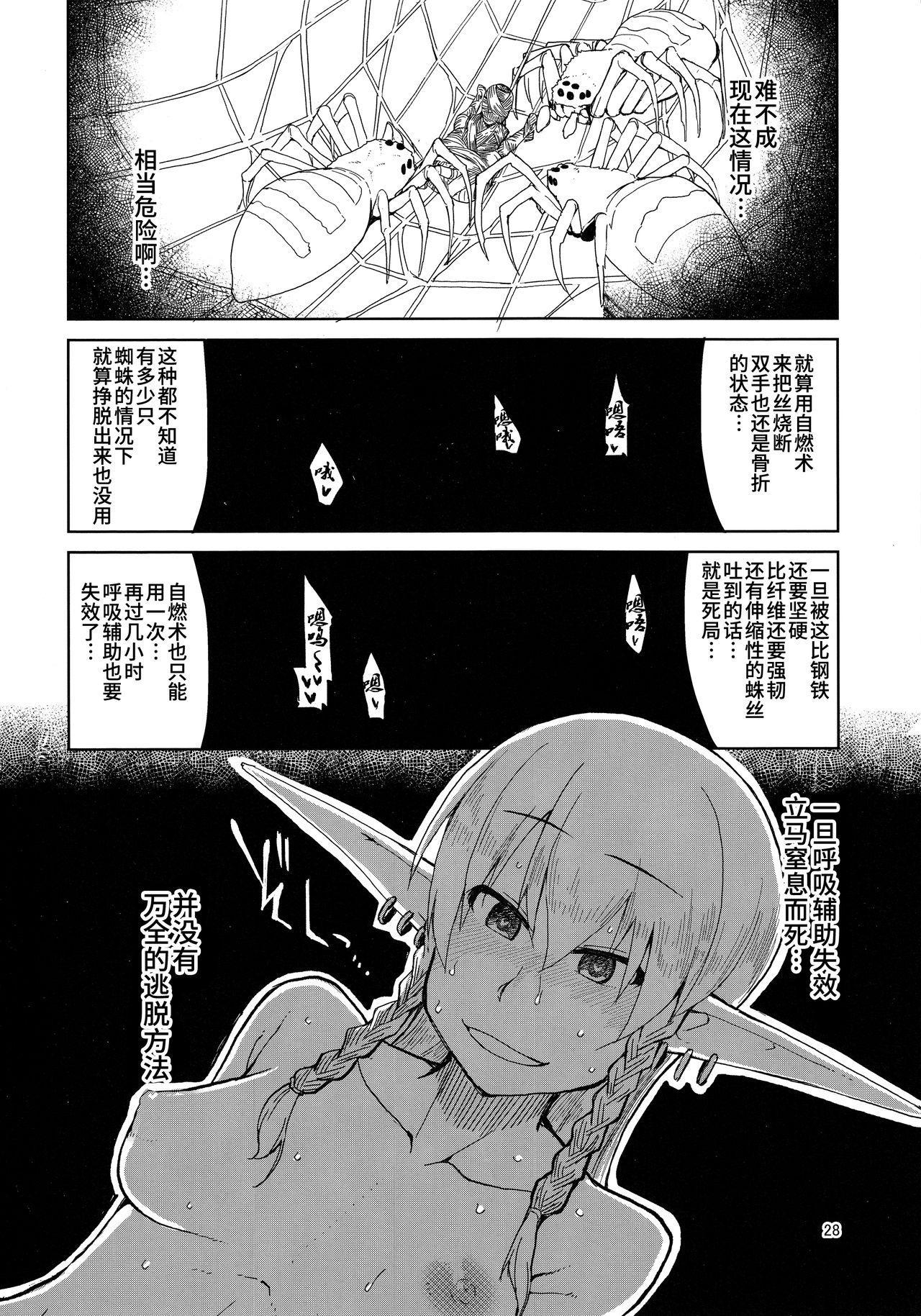 Dosukebe Elf no Ishukan Nikki 5 28