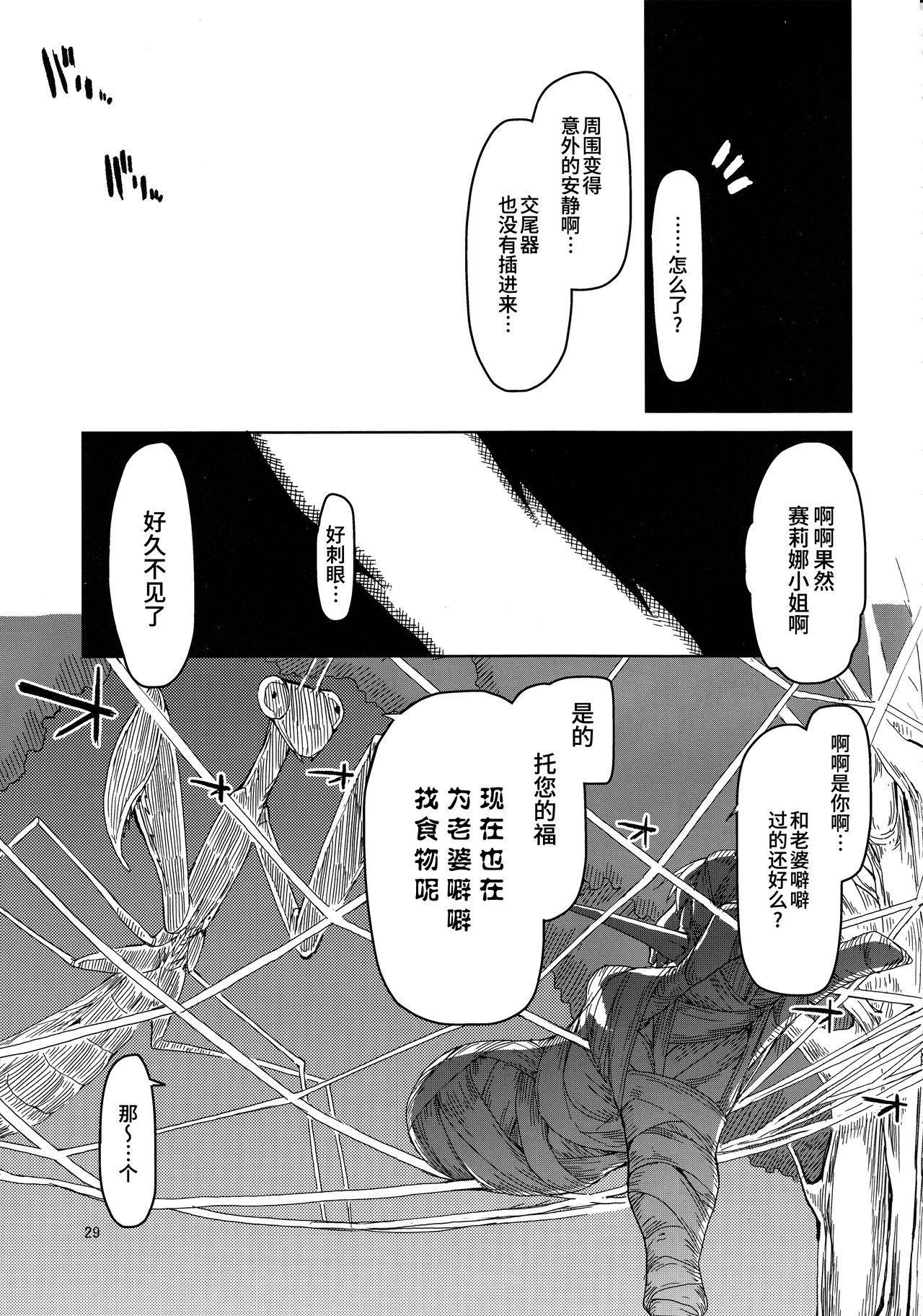 Dosukebe Elf no Ishukan Nikki 5 29