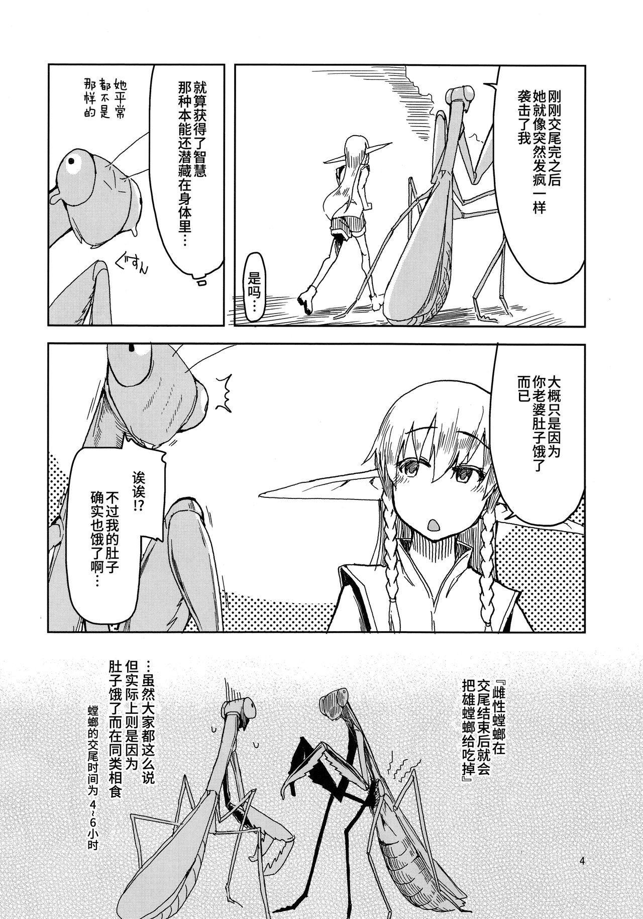 Dosukebe Elf no Ishukan Nikki 5 4
