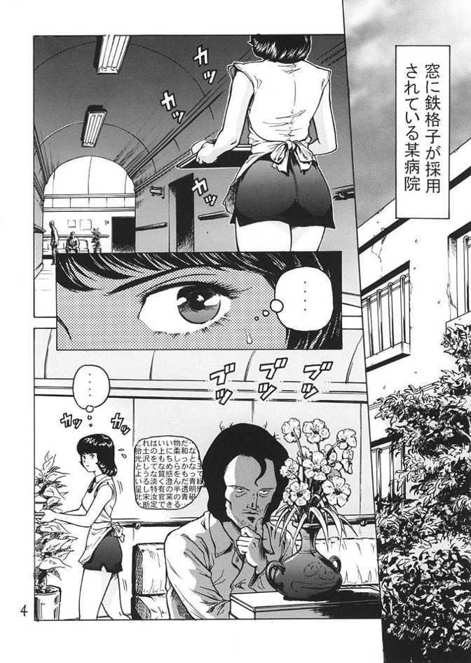 Fa. Yuirii no Atsuatsu Kango 2