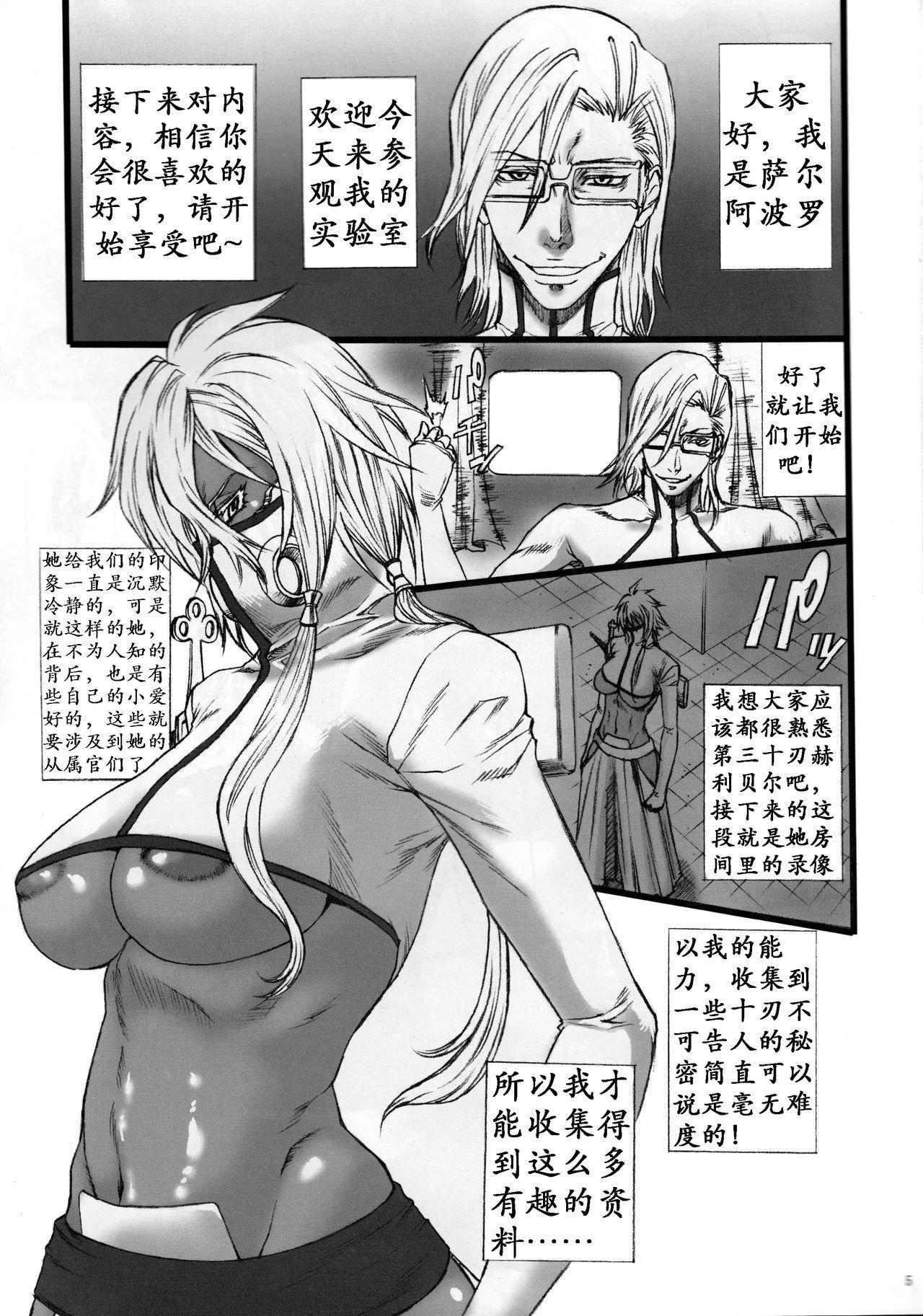 03 Shiki 030 2
