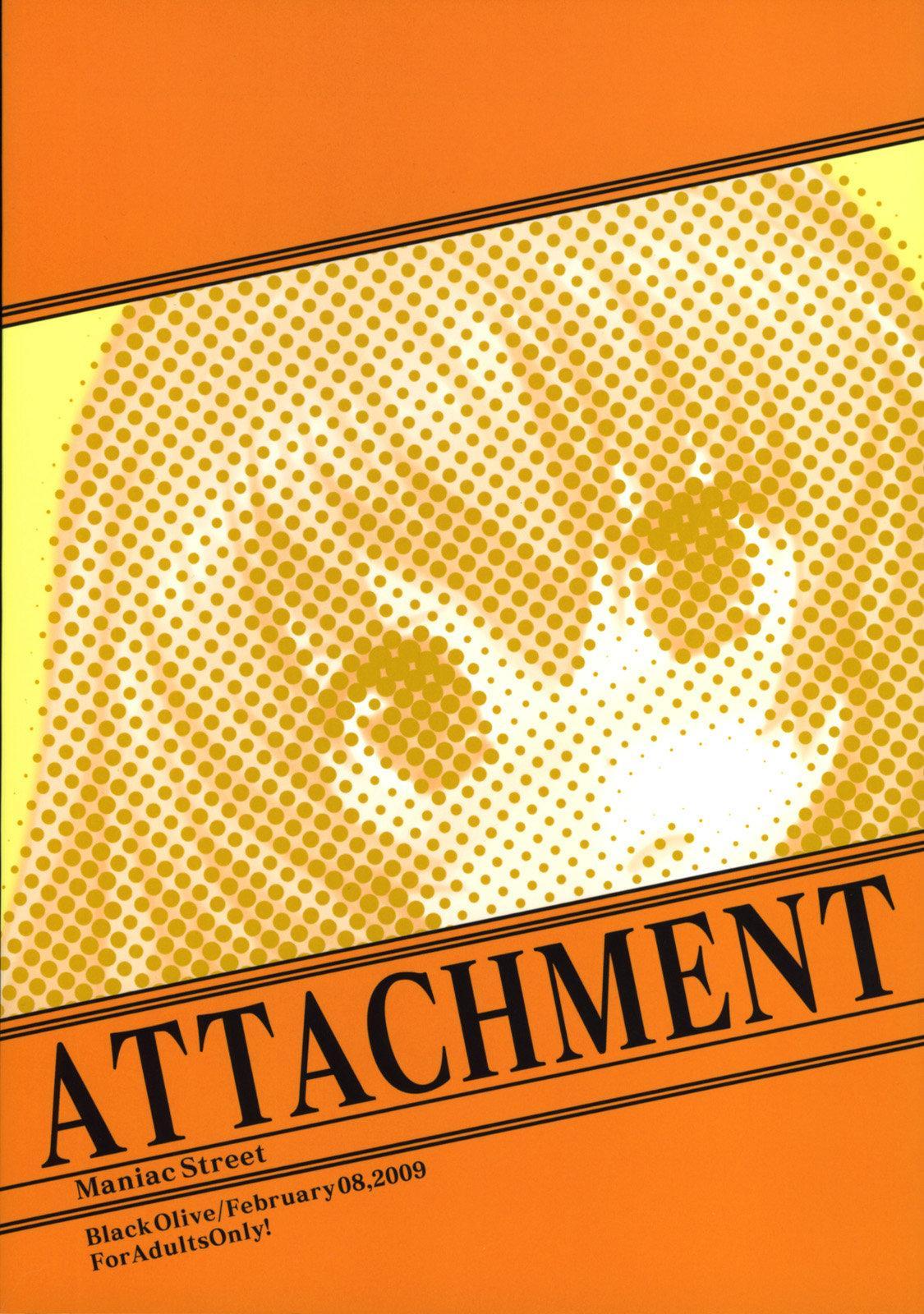 ATTACHMENT 29