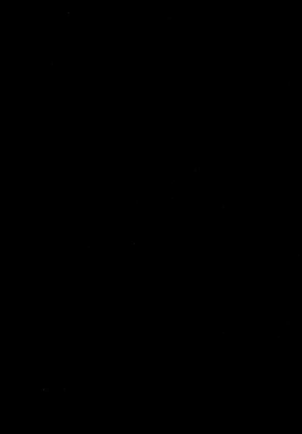 AmiUsa 18