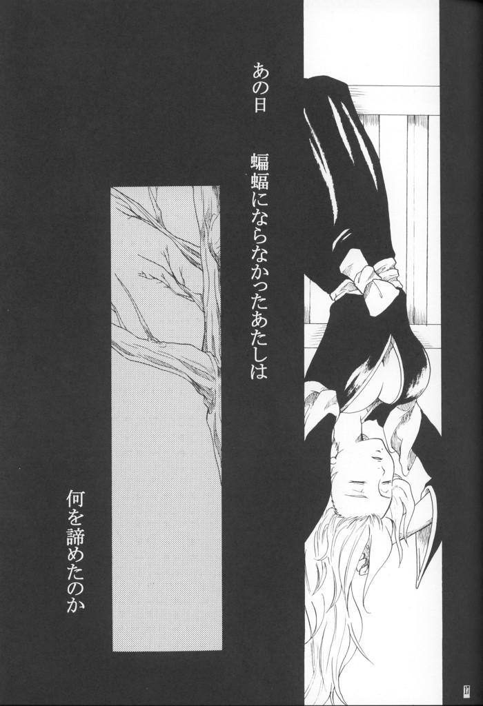 Kyokutou Saizensen-ka 15