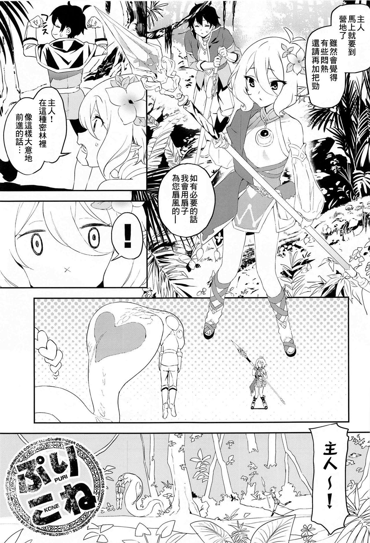 Kokkoro-chan no Torotoro Osouji 2
