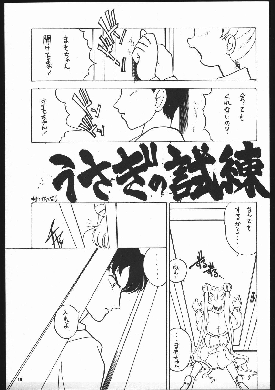 Dance of Princess S 13