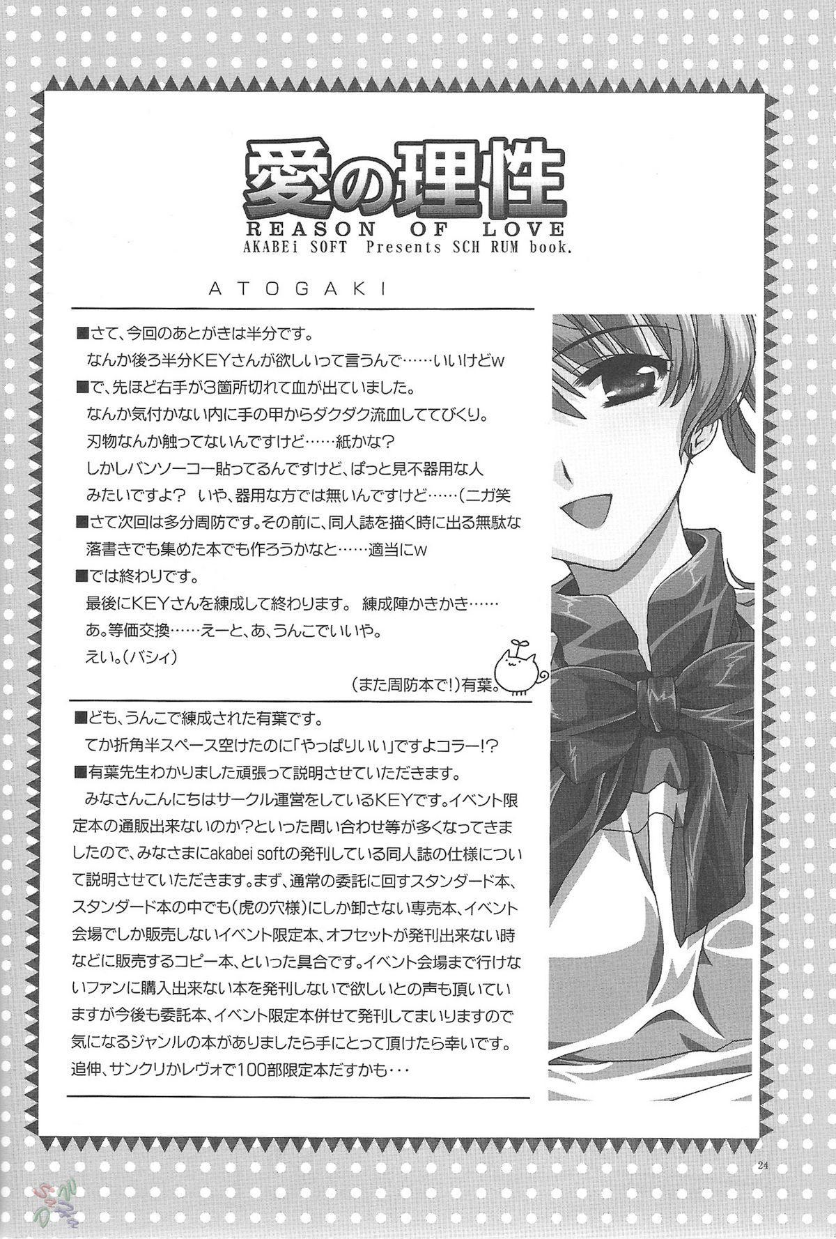 Ai no Risei - Reason of Love 22