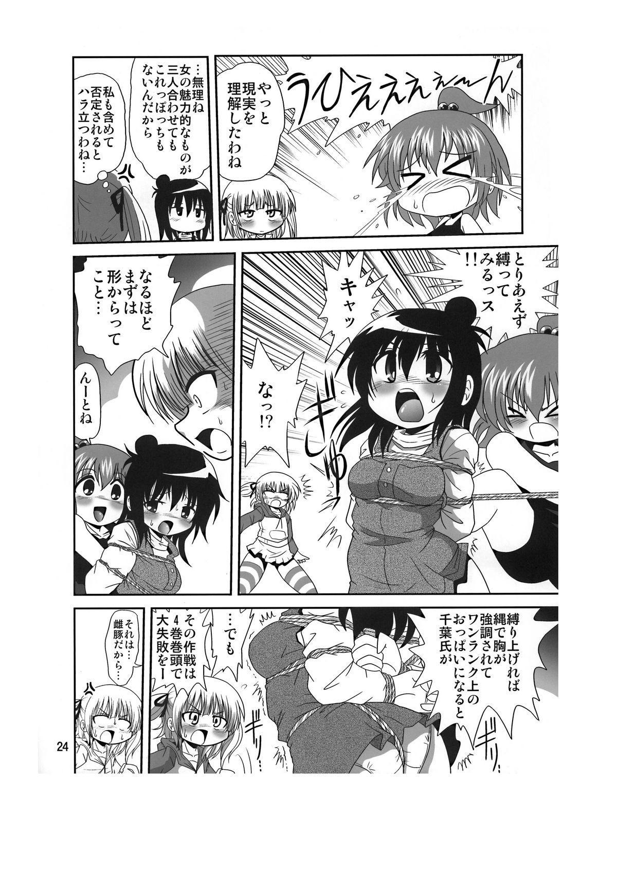Sansukumi 23