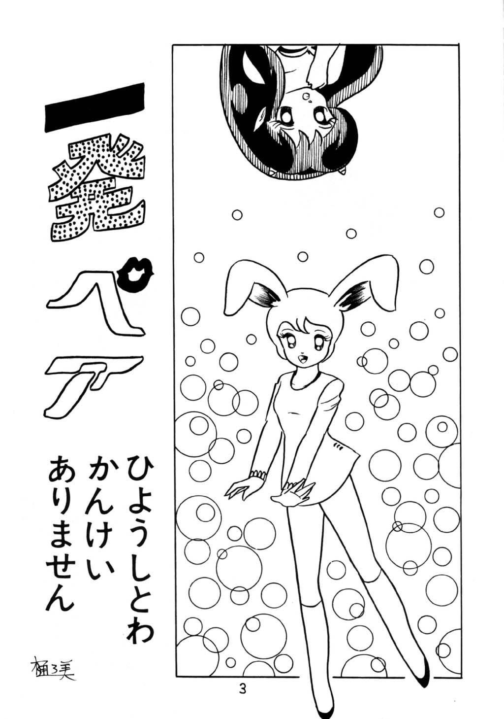 Puchi Bunny 2 2