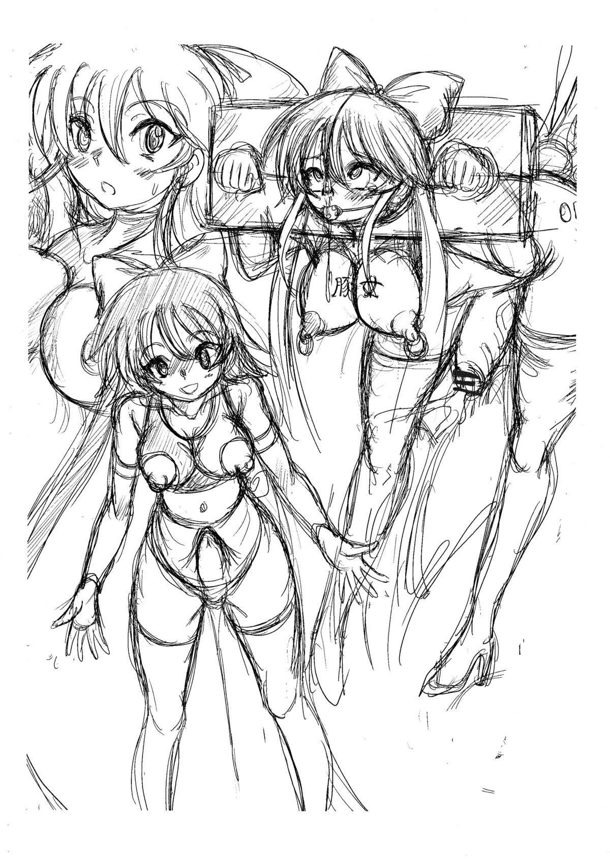 Namanekotei - Mahou Shojou Ai and Sailormoon 10