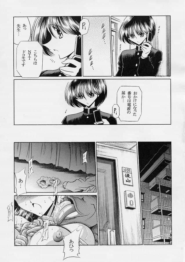 Sensei 25