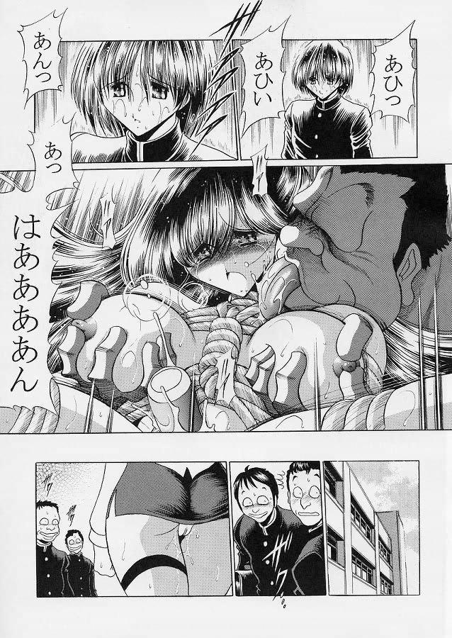 Sensei 33