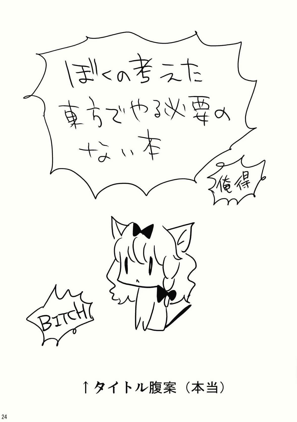 Kore Touhou de Yaru Hitsuyou Naku ne? 23