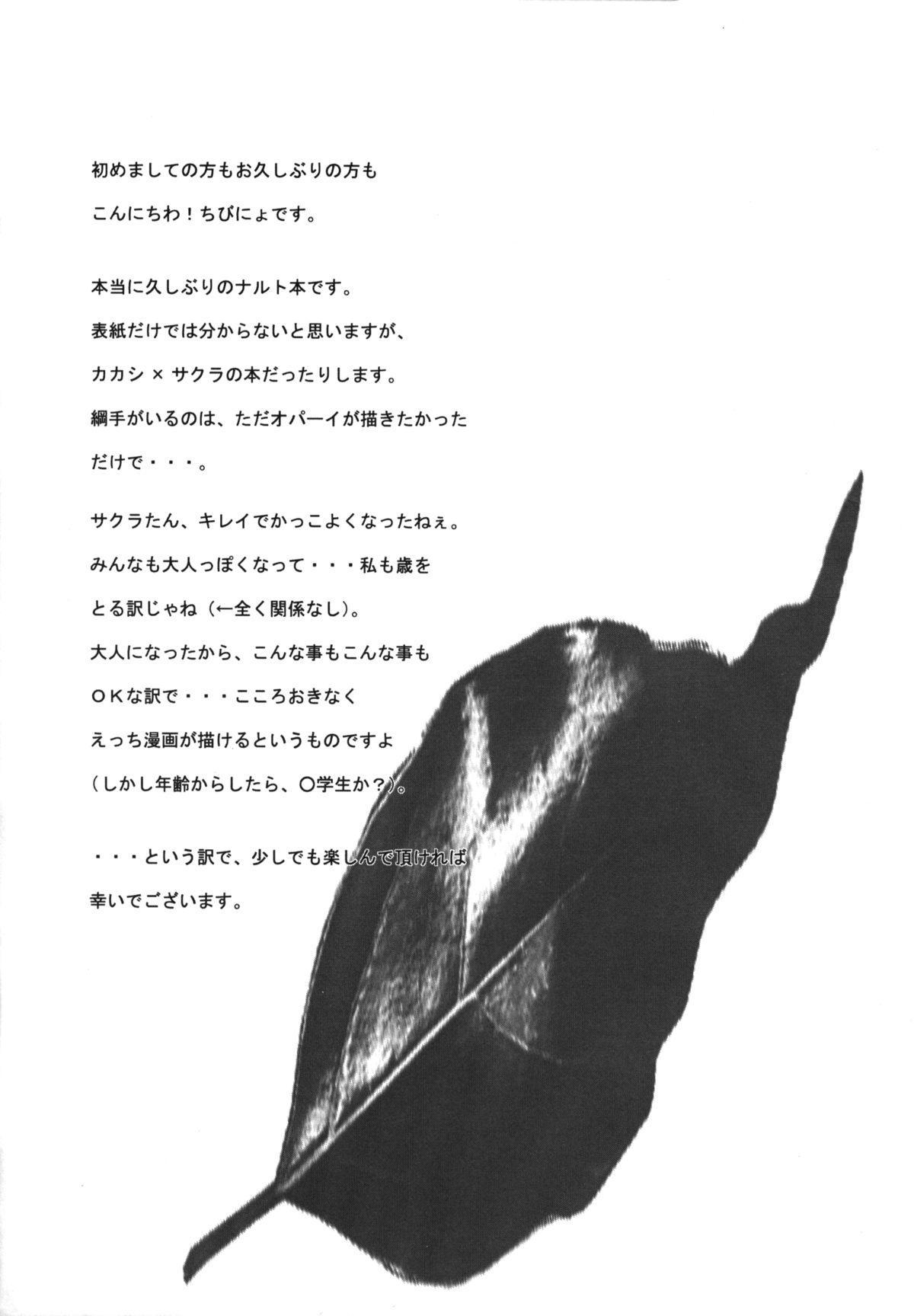 (C70) [Hamustar (Chibinyo)] Hamu-juu -San- (Naruto) [English] [Yoroshii] 2