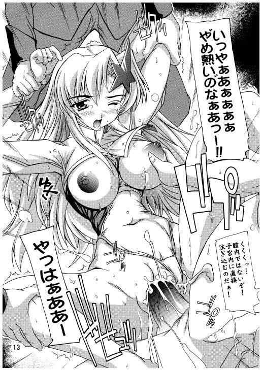 Lacus Destiny ~ Soushuuhen 3 9