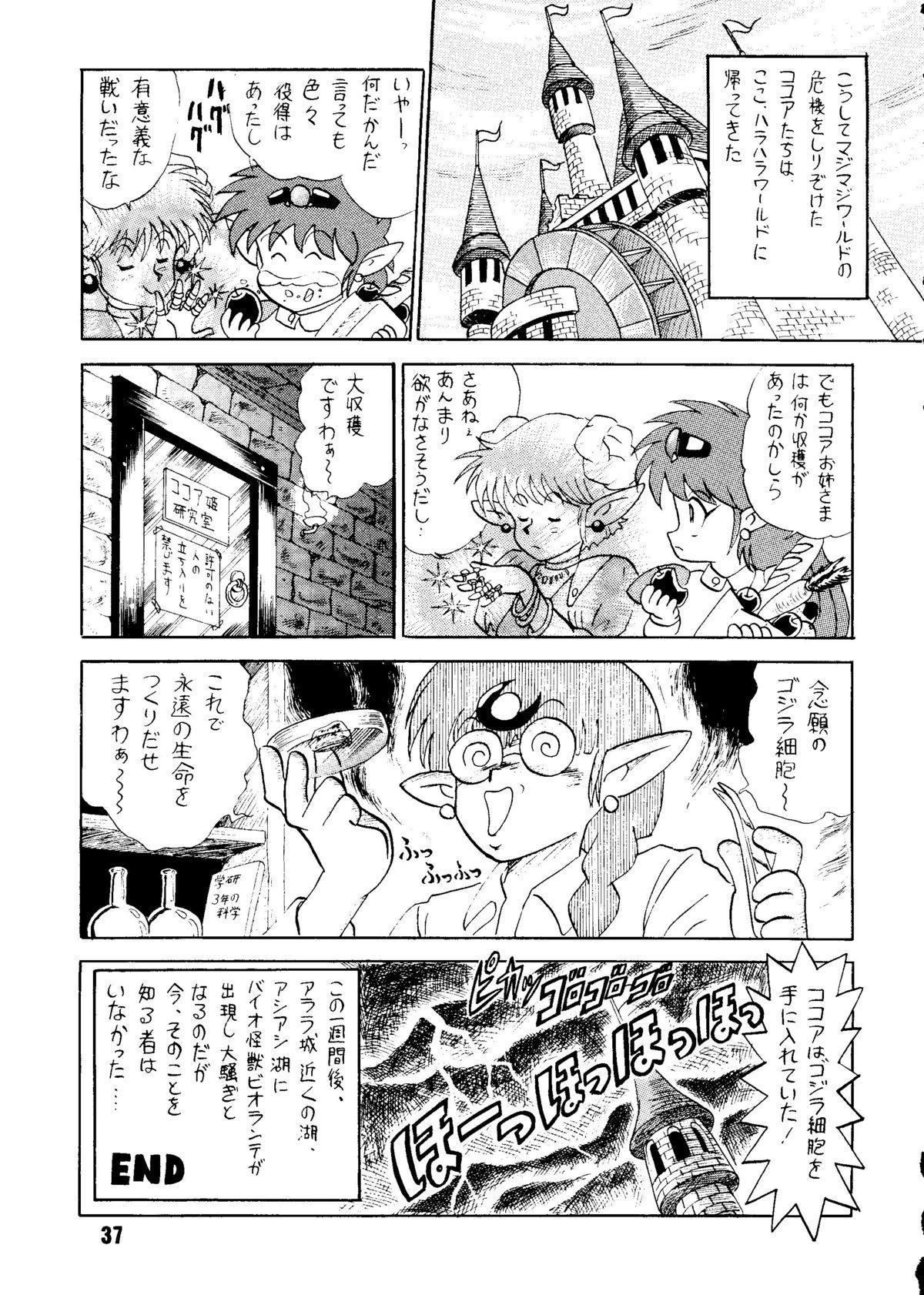 Sairoku hon 35