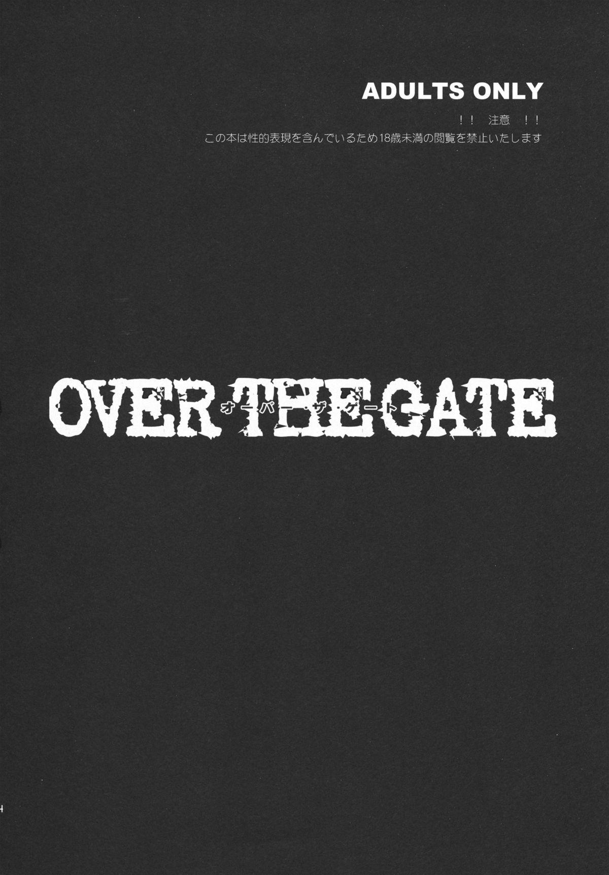 OVER THE GATE 3