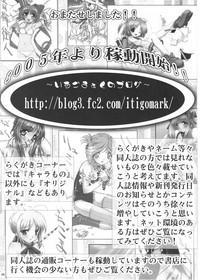 Bujoku Hime 3